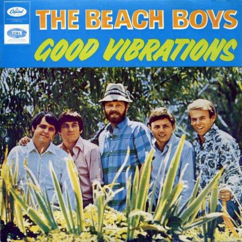 Good Vibrations Beach Boy