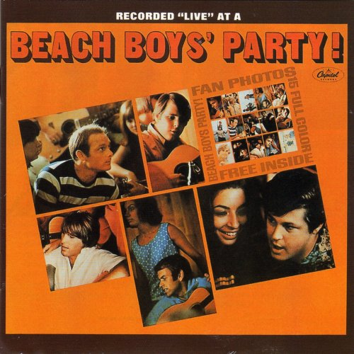 http://www.sergent.com.au/beachboys/party.jpg